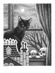 Hi-Jeb-Cat-Portrait